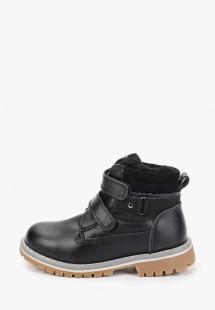 Купить ботинки vitacci mp002xb00flmr320