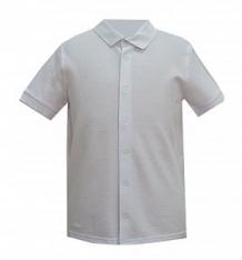 Купить рубашка белый слон, цвет: белый ( id 12774130 )
