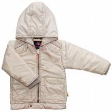 Купить куртка даримир шотландец, цвет: бежевый ( id 12302668 )