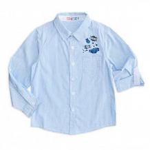 Купить рубашка me&we, цвет: белый/голубой ( id 11713276 )
