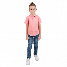 Купить рубашка fresh style, цвет: оранжевый ( id 11084900 )