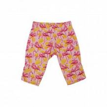 Купить леггинсы babyglory summer time, цвет: розовый ( id 10534906 )