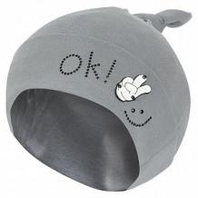 Купить шапка levelpro kids шеврон ок, цвет: серый ( id 10458656 )