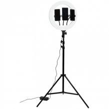 Купить artstyle светильник настольный кольцевой tl-603b tl-603b