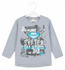 Купить джемпер babyglory skateboarder, цвет: серый ( id 8517811 )