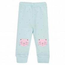 Купить брюки мелонс котик, цвет: голубой ( id 10887110 )