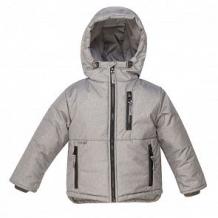 Купить куртка arctic kids, цвет: серый ( id 11309756 )