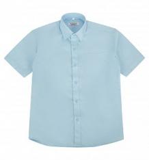 Купить рубашка rodeng, цвет: голубой ( id 149262 )