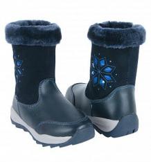 Купить сапоги twins, цвет: синий ( id 9781140 )