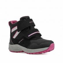 Купить сапоги geox, цвет: черный/фуксия ( id 11060894 )
