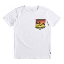 Купить футболка детская quiksilver ssquadroglidey white белый ( id 1194890 )