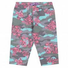 Купить бриджи batik, цвет: мультиколор ( id 12558610 )