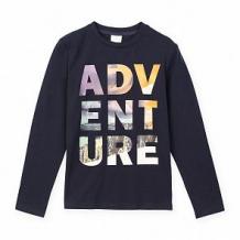 Купить джемпер play today mountain adventure, цвет: синий ( id 11169794 )