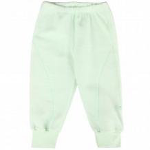 Купить брюки бамбук, цвет: салатовый ( id 11161748 )