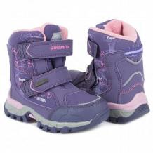 Купить ботинки elegami, цвет: сиреневый ( id 11830996 )