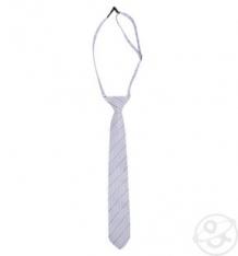 Купить галстук rodeng, цвет: фиолетовый ( id 364565 )