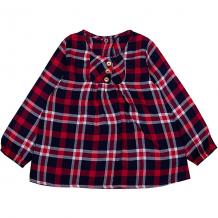 Купить блузка z ( id 9616931 )