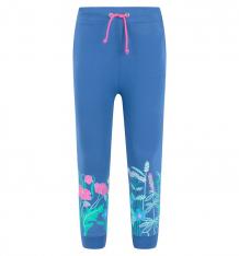 Купить брюки free age hello spring, цвет: серый ( id 4687945 )