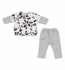 Купить комплект блузка/брюки ewa matylda, цвет: серый ( id 2584157 )
