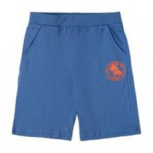 Купить шорты optop, цвет: синий ( id 12641476 )