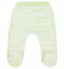 Ползунки Мелонс, цвет: зеленый ( ID 4713343 )