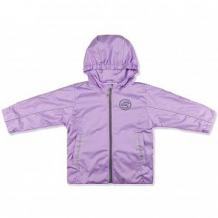Купить ветровка leo орион, цвет: фиолетовый ( id 9777423 )