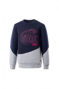 Купить sweatshirt iguana lifewear ( размер: 152 152 ), 11568421