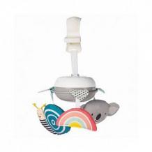 Купить музыкальный мобиль taf toys «коала» для коляски ( id 11349190 )