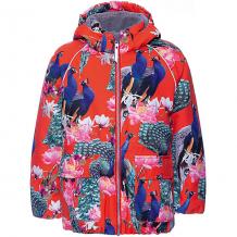 Купить утеплённая куртка molo ( id 12336663 )