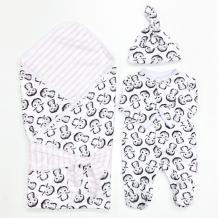 Купить комплект на выписку супермамкет летний (комбинезон, шапочка, плед, лента) пингвины kompl-l02/пингвиныроз