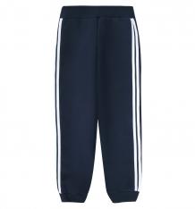 Купить спортивные брюки basia, цвет: синий ( id 9667581 )