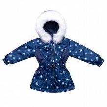 Купить куртка arctic kids, цвет: синий ( id 11309570 )