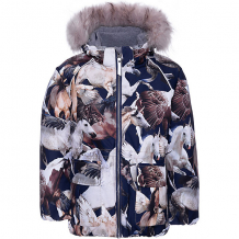 Купить утеплённая куртка molo ( id 12337018 )