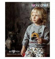 Купить джемпер lucky child крутой парень, цвет: мультиколор ( id 9459603 )