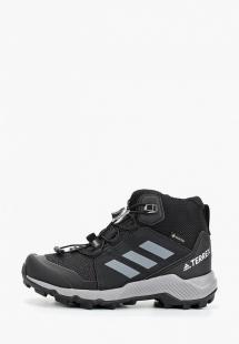 Купить ботинки трекинговые adidas ad002akfkny3b300