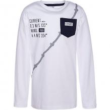 Купить футболка с длинным рукавом trybeyond для мальчика 10964742