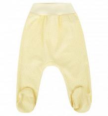 Купить ползунки три медведя нежность, цвет: желтый ( id 9100273 )