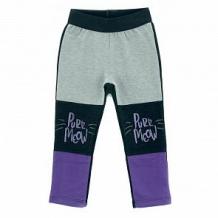 Купить брюки mirdada, цвет: серый/черный ( id 12280756 )