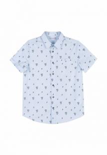 Купить рубашка coccodrillo mp002xb00d26cm158