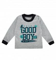 Купить джемпер мелонс good boy, цвет: серый/синий ( id 9946899 )