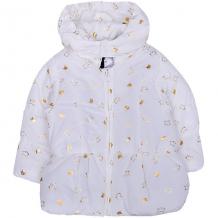 Купить утепленная куртка z ( id 9617034 )