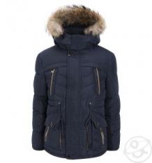 Куртка Fun Time, цвет: синий ( ID 3404573 )