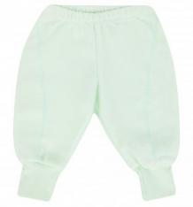 Купить брюки бамбук, цвет: салатовый ( id 7477861 )