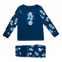 Купить пижама джемпер/брюки chinzari, цвет: синий ( id 11700148 )