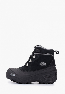 Купить ботинки the north face th016akgmyy7a11i