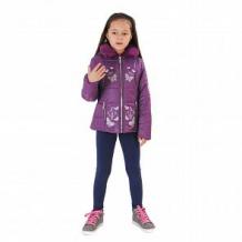 Купить куртка милашка сьюзи, цвет: фиолетовый ( id 11446966 )