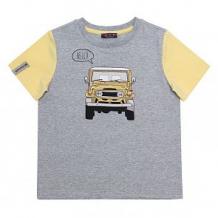 Купить футболка chinzari страны мира, цвет: серый ( id 11641858 )