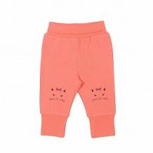 Купить брюки cherubino кошкин дом, цвет: коралловый ( id 11376064 )