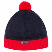 Купить шапка arctic kids, цвет: синий ( id 11308820 )