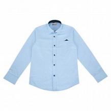 Купить рубашка deloras, цвет: голубой ( id 10692602 )